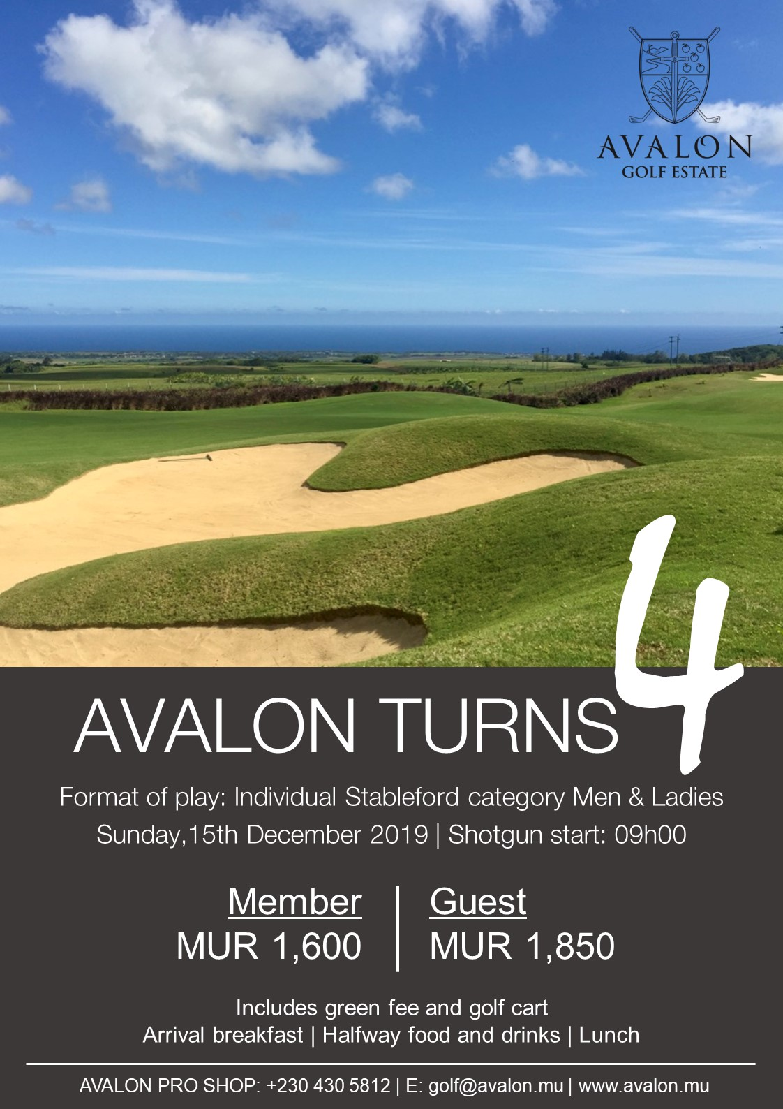 Avalon turns 4